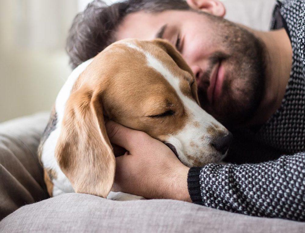 Quando il benessere del cane si fonde con quello dell'uomo